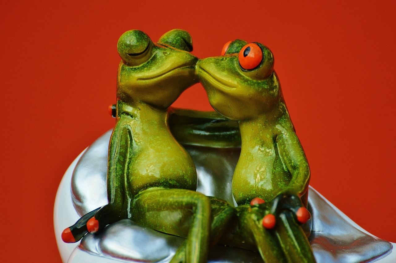 frogs-1250895_1280